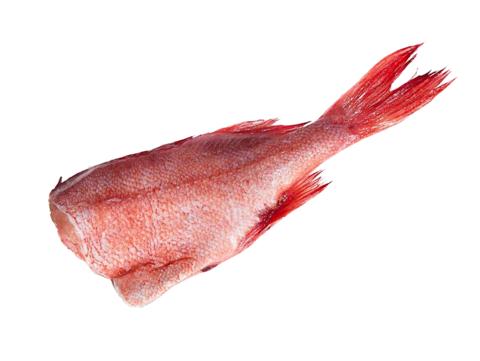 Окунь морской б/г (весовой товар)