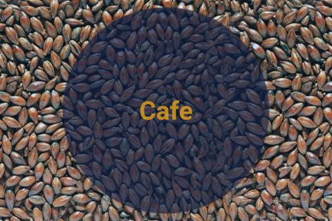 Солод Кофейный / Cafe, 400-600 EBC, 1 кг