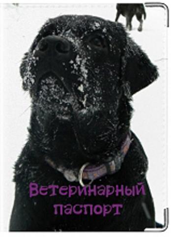 """Обложка для ветеринарного паспорта """"Лабрадор"""" (чёрный)"""