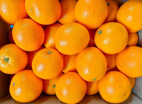 Апельсины, 15 кг