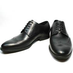 Дерби туфли туфли мужские черные Ikos 1157-1 Classic Black.