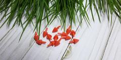 Нос для снеговика пластиковый прямой Морковка, 10 шт.