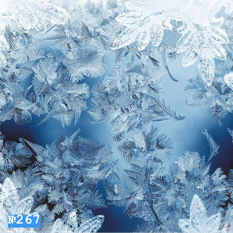 Фотофон виниловый «Голубой морозный узор» №267