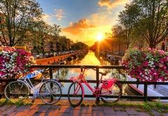 Выходные в Амстердаме от Wooden City - Позитивные и яркие деревянные пазлы с деталями разных формы. Прекрасное фото Амстердама, собирайте вместе с друзьями
