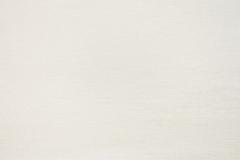 Шенилл Trend ivory (Тренд ивори)