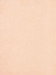 Микровельвет Velvet Lux (Вельвет Люкс) 25