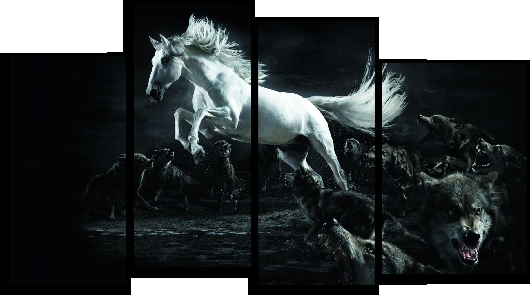 """Животные Модульная картина """"Белый скакун"""" М408.png"""