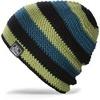 Картинка шапка-бини Dakine Waldo Ocean Moss - 1