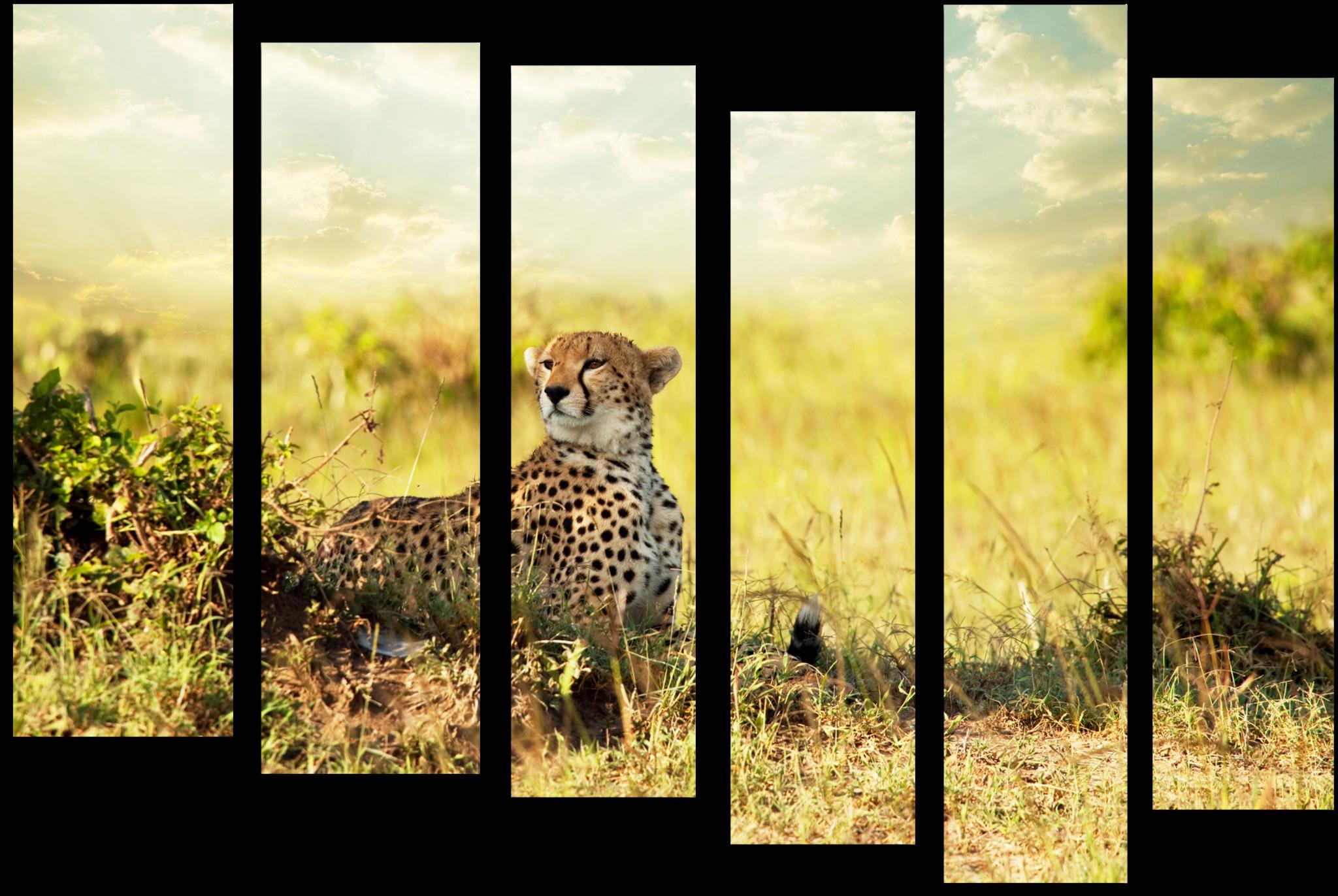 """Природа Модульная картина """"Задумчивый гепард"""" М439.png"""