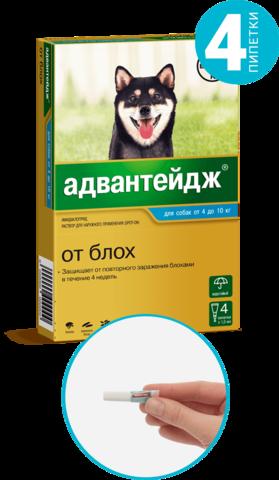 Адвантейдж для собак от 4 до 10 кг   4 пип.