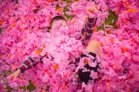 Пушистая бумага для шоу (ГОЛУБОЙ, цветок)