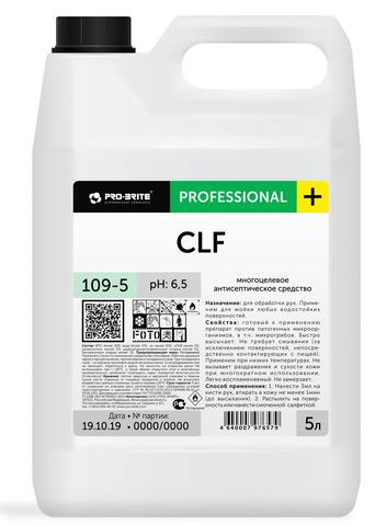 Средство для обработки рук и поверхностей Антисептик Pro-Brite CLF 5 л