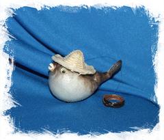 Рыба Попугай в шляпе 8 - 10 см.