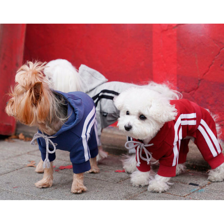 370 PA - Спортивный коcтюм для собак с лампасами