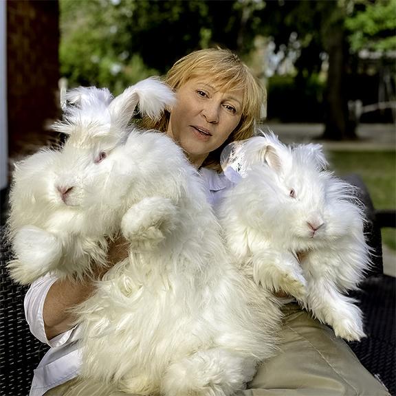 Лада Кирисенко, Rusangora и ее кролики-