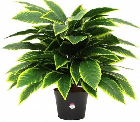 Растение иск.Кротон Лейк,65х70х70см,11374