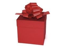 Коробка для подарков Красная  12,5 см*12,5 см*12,5 см