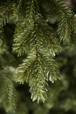 Искусственная елка Шервуд Премиум стройная 155см зеленая