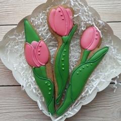 Набор тюльпанов №1