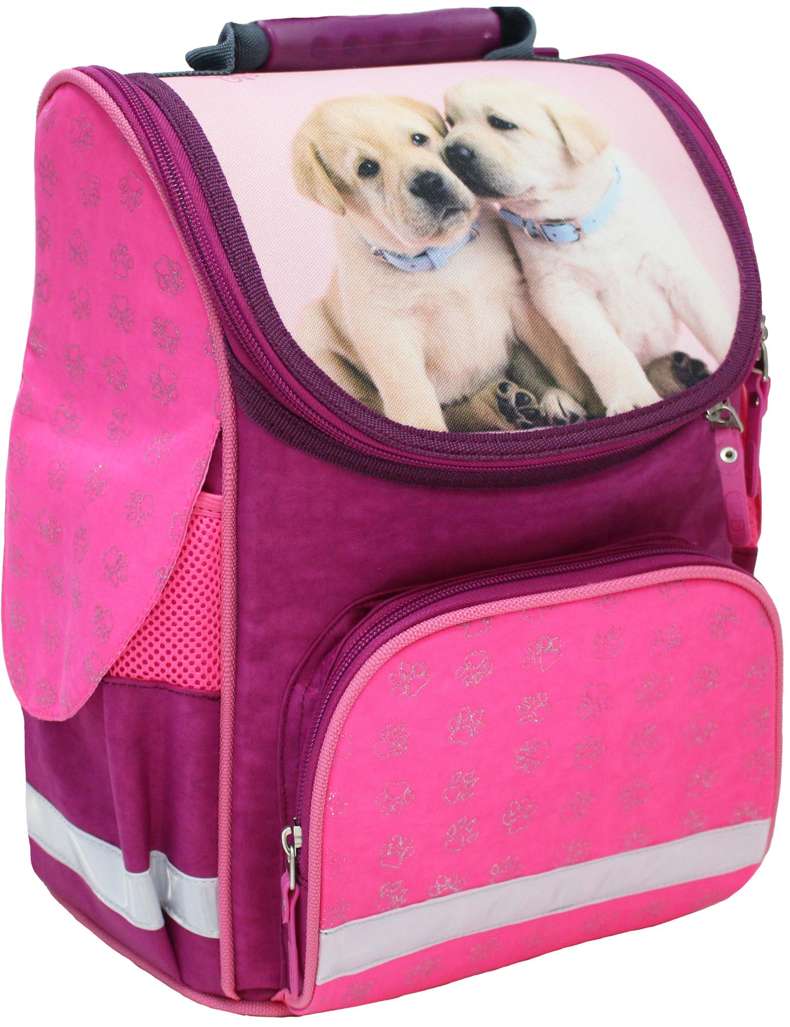 Школьные рюкзаки Рюкзак школьный каркасный Bagland Успех 12 л. 143 малина 118 д (00551702) IMG_4776.JPG