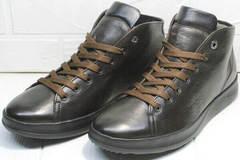 Кожаные ботинки на шнуровке. Удобные кроссовки на каждый день Ikoc 1770-5 B-Brown.