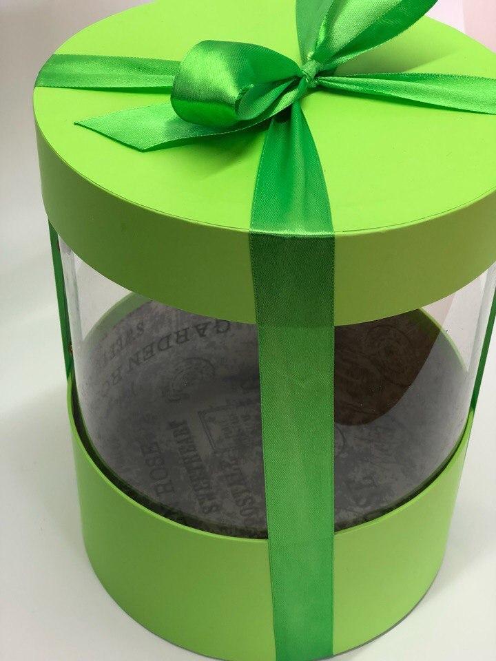 Коробка аквариум 16 см Цвет : Зеленый . Розница 350 рублей .
