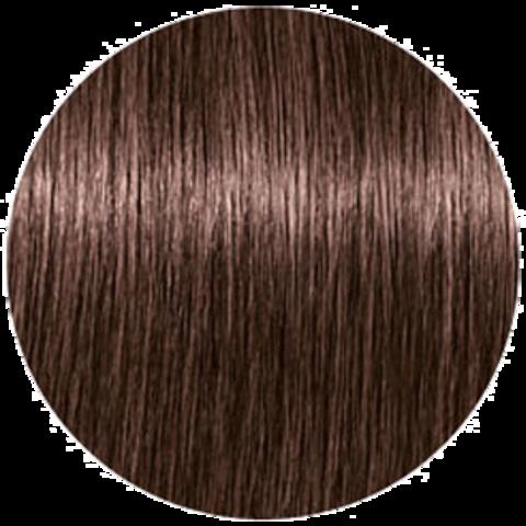 Schwarzkopf Igora Royal TakeOver Dusted Rouge 5-869 (Светлый коричневый красный шоколадно-фиолетовый) - Краска для волос