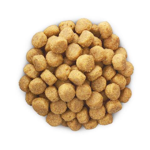 купить хиллс Hill's™ Prescription Diet™ Canine h/d™ Heart Care сухой корм для собак, диетический рацион на ранних стадиях сердечных заболеваний 5 кг