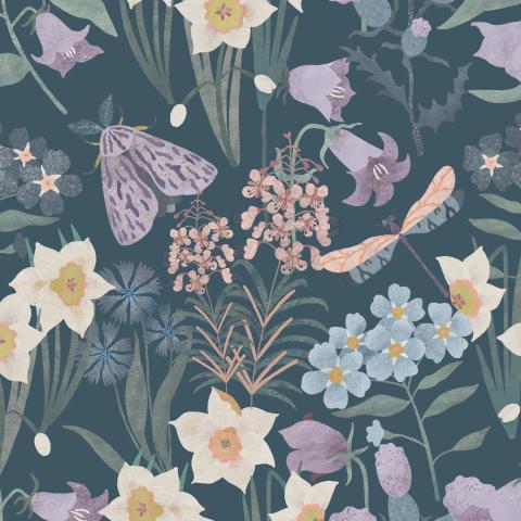 Полевые цветы, мотылёк, стрекоза на синем