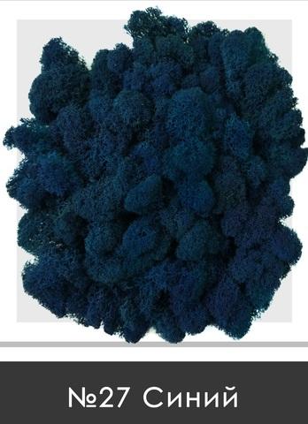 Стабилизированный мох (ягель) цвет №27 Синий