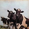 Pink Floyd ‎/ Atom Heart Mother (LP)