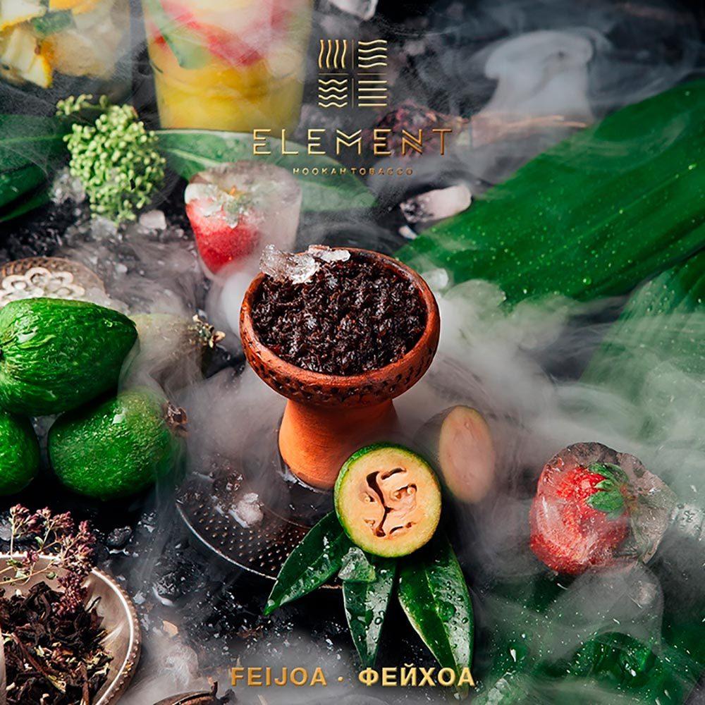 Табак для кальяна Element Feijoa 100 гр