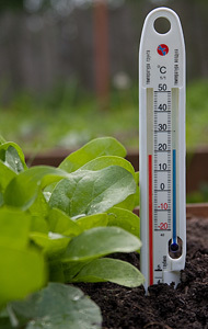 Термометр почвенный,пластик