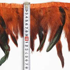 Купить оптом перья Петуха на ленте в интернет-магазине Orange дешево