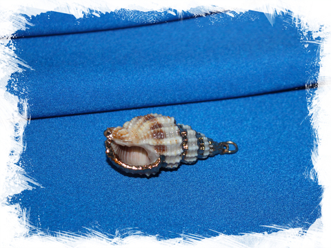 Подвеска из морской ракушки для украшений