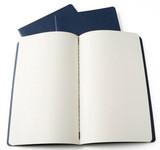 Блокнот Moleskine Cahier Large нелинованный (CH118)