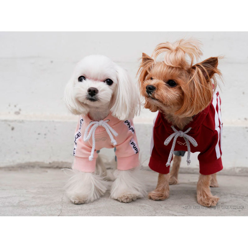667 PA - Толстовки для собак с лампасами
