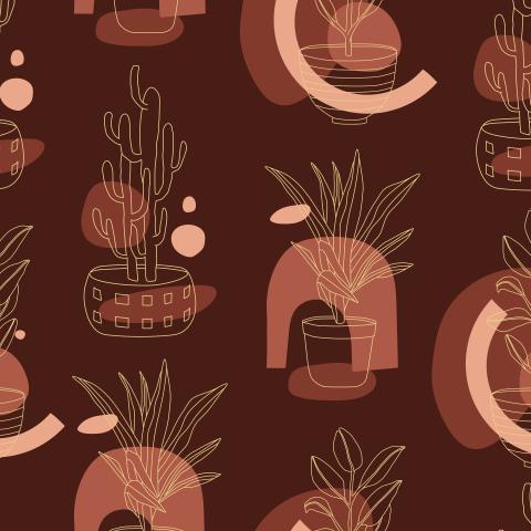 Комнатные растения - абстракция