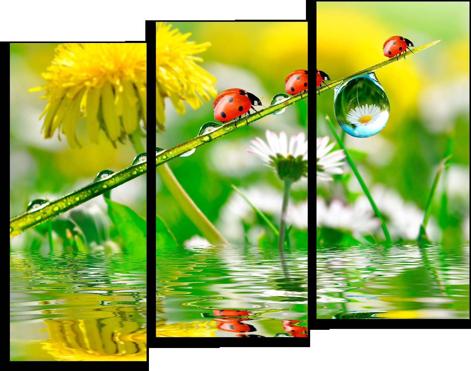 """Модульные картины Модульная картина """"Флора и фауна"""" М40.png"""