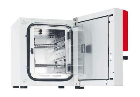 Термостат суховоздушный BD 115 с естественной конвекцией, рабочий объем камеры 112 л. Avantgarde.Line
