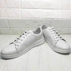 Кожаные кроссовки кеды женские Evromoda 141-1511 White Leather.