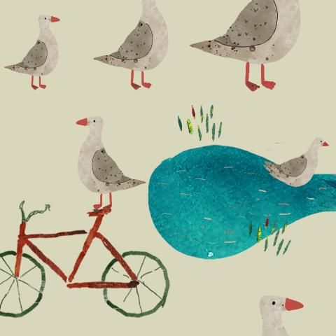 little birds on farm/ птицы на ферме