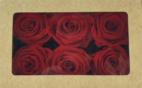 Стабилизированный Бутон Розы Optimum Flowers Standart . Цвет Красный (Диаметр 7см)