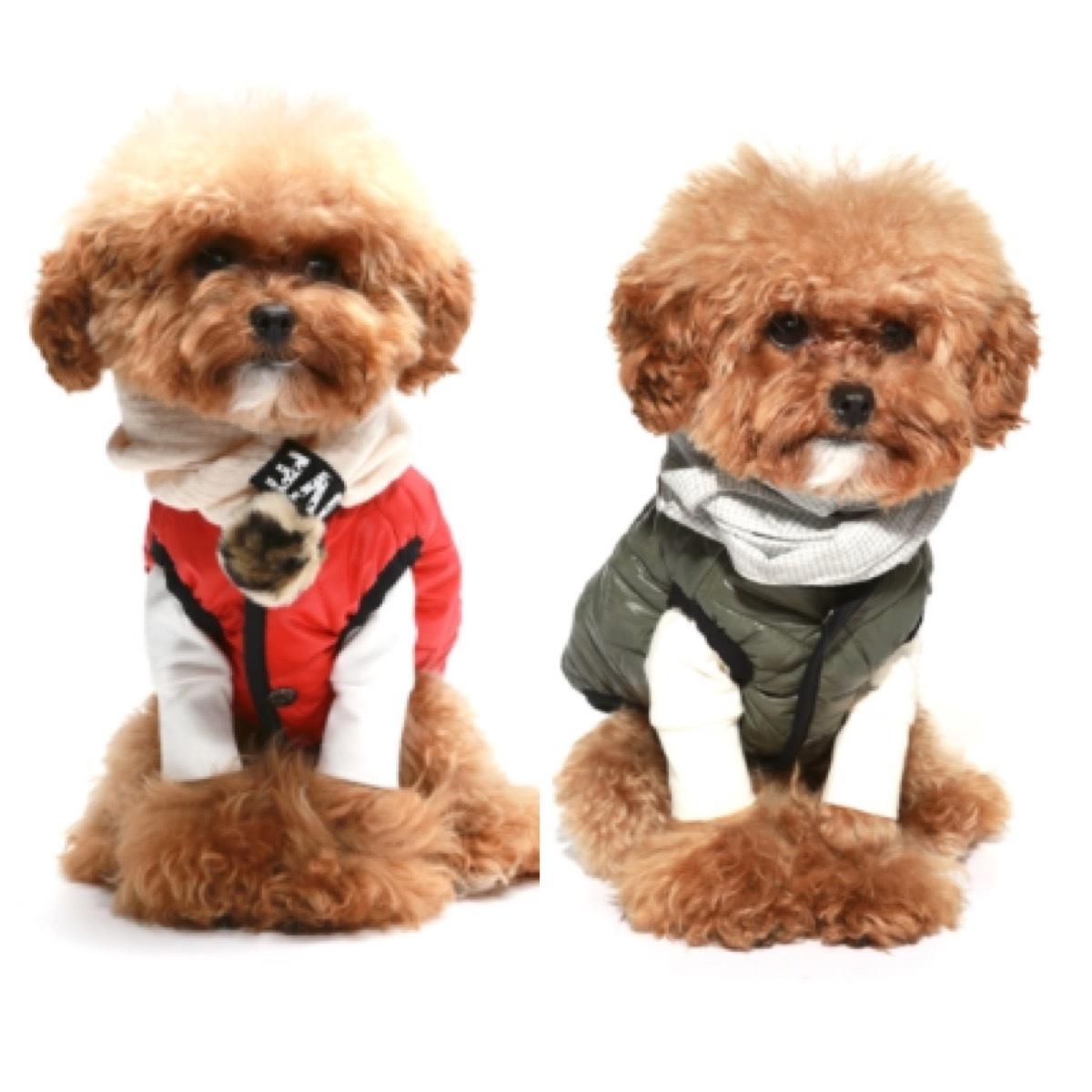 купить одежду для собак puppyangel в москве