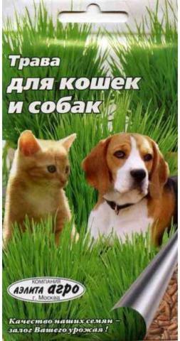 Семена Трава для кошек и собак, Дв