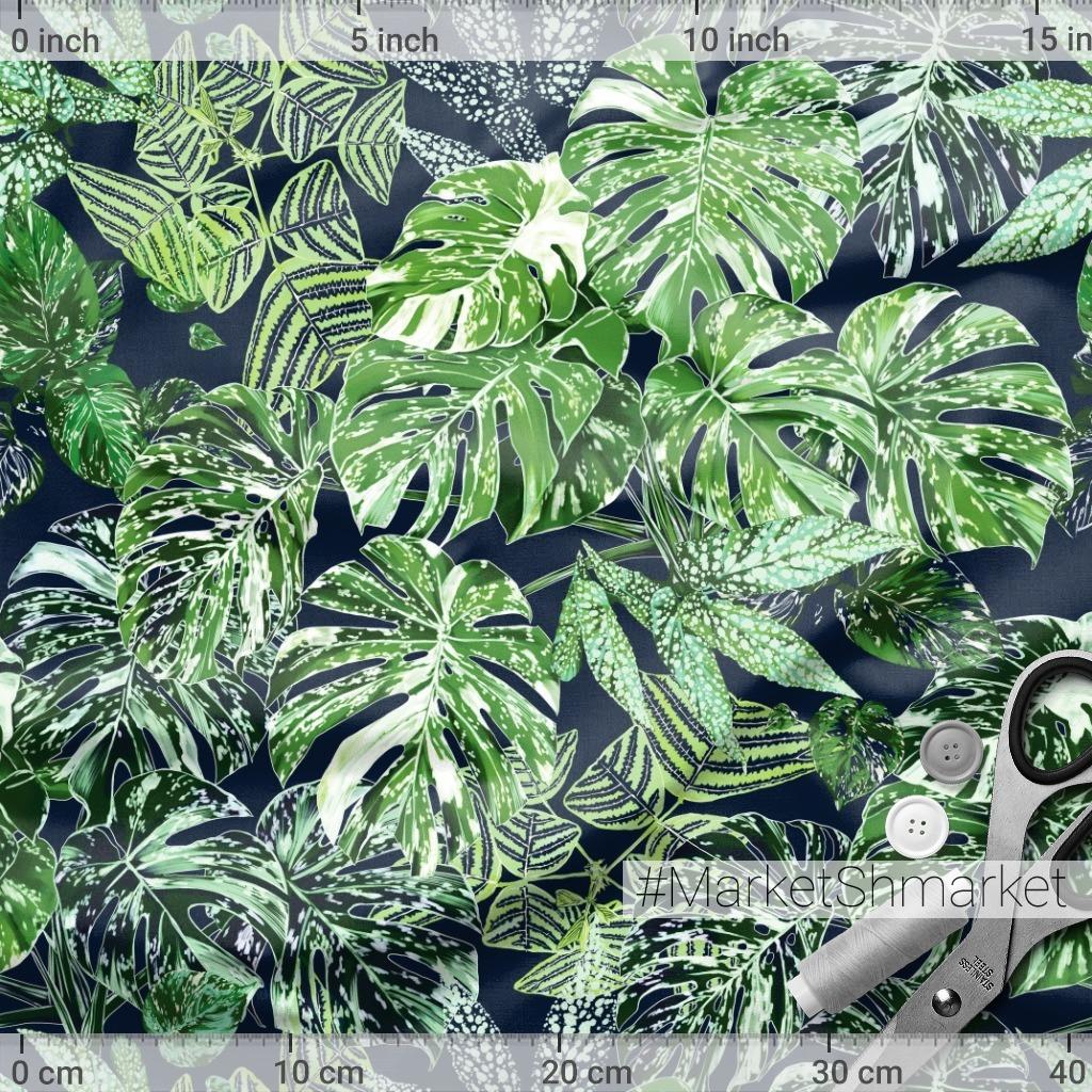 листья монстеры