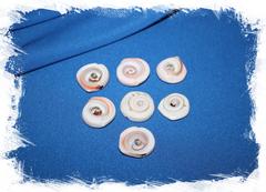 Срезы морских ракушек с дырочкой для бижутерии