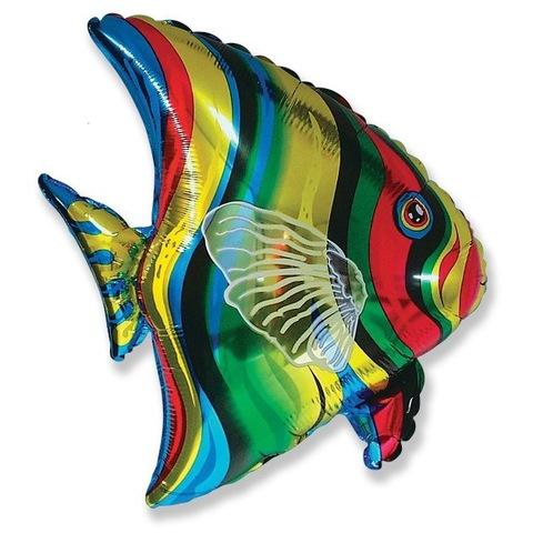 Шар фигура Тропическая рыбка, 66 см
