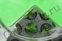 GrowPlant 120 Site купить в магазине growmir.ru