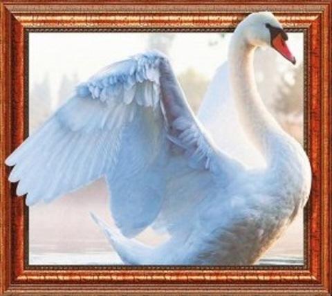 Алмазная Мозаика 40x50 Белый лебедь крупным планом (арт. 2PAV751)